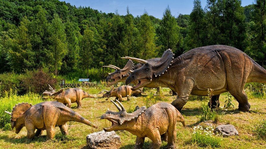 """""""Śladami dinozaurów""""- oddział IV"""
