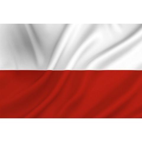 Polska Flaga- oddział II
