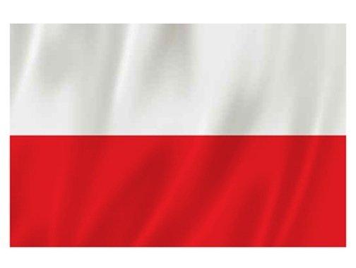 Dzień Flagi-oddział I